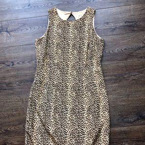 Maggy London Cheetah Print Dress sz 6😍